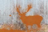 Urban Animals IV Posters by Ken Hurd
