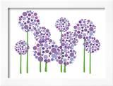 Purple Allium Posters by  Avalisa