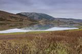 Marin County Landscape in Fall Veggoverføringsbilde av Henri Silberman