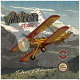 Avion postal Print van Bruno Pozzo