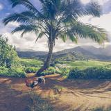 Hanalei Chicken Landscape, Kauai Hawaii Fotografisk tryk af Vincent James