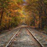 Autumn Tracks (Square), New Hampshire Fotografie-Druck von Vincent James