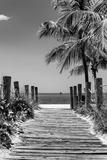 Boardwalk on the Beach - Key West - Florida Fotografisk tryk af Philippe Hugonnard