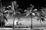 Palm Trees overlooking Downtown Miami - Florida Reproduction photographique par Philippe Hugonnard