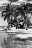 Paradisiacal Beach with a Life Guard Station - Miami - Florida Fotografisk tryk af Philippe Hugonnard