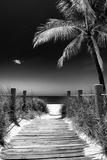 Boardwalk on the Beach - Florida Fotografisk tryk af Philippe Hugonnard