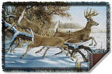 Wild Wings - Breaking Cover 2 Woven Throw Throw Blanket