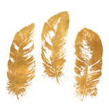 Gold Feather Square (gold foil) 高品質プリント : パトリシア・ピント