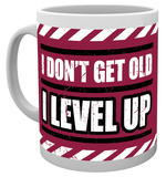 Gaming - I Level Up Mug Krus