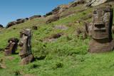 Statues on Isla De Pascua. Rapa Nui. Easter Island Lámina fotográfica por Vladimir Krupenkin