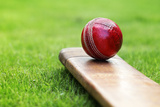 Cricket Bat and Ball Fotografisk trykk av Brian Jackson