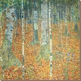 Berkenbos, ca. 1903 Kunst op gespannen canvas van Gustav Klimt