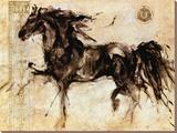 Lepa Zena Stretched Canvas Print by Marta Gottfried