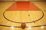 A Basketball in Field Lámina fotográfica por  zmu