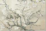 Branches d'amandier en fleurs, Saint-Rémy, vers1890 - tonalité brun beige Toile tendue sur châssis par Vincent van Gogh