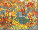 The Pool Stretched Canvas Print by Tom Thomson
