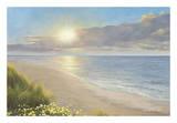 Beach Serenity Láminas por Diane Romanello