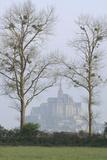 Silhouette du Mont-Saint-Michel se détachant dans la brume, derrière les arbres Reproduction photographique par Philippe Berthé