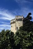 Fort Saint-André, partie haute d'une tour du château-royal vue du sud-est Reproduction photographique par Philippe Berthé