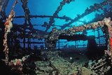 Scuba Diver Diving on Umbria Shipwreck, Sudan, Africa, Red Sea, Wingate Reef Fotografisk tryk af Reinhard Dirscherl