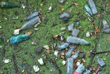 Garbage in River Photographic Print by Hans Peter Merten