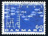 Fish and Chart Fotografisk trykk av  rook76