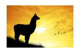 Peruvian Landscape Giclée-Druck von  adrenalinapura