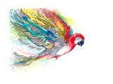 Parrot Poster di  okalinichenko