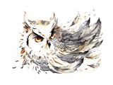 Bird Premium Giclee Print by  okalinichenko