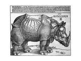 Rhinoceros, Print Given to Maximilian I by the King of Lisbon, 1515 Giclee-trykk av Albrecht Durer