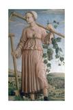 Allegory of Autumn, 15th Century Lámina giclée por Francesco del Cossa
