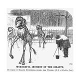 Wonderful Instinct of the Giraffe, 1865 Giclee-trykk av George Du Maurier