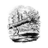 Man Carrying a Large Tree Trunk on His Shoulder, 19th Century Lámina giclée por George Cruikshank