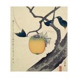 Moon, Persimmon and Grasshopper, 1807 Giclée-tryk af Katsushika Hokusai
