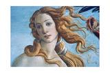 The Birth of Venus (Detail), C1485 Reproduction procédé giclée par Sandro Botticelli