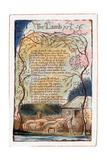 The Lamb, Illustration from 'Songs of Innocence and of Experience', C1770-1820 Lámina giclée por William Blake
