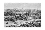 The Cotton Market at Bombay, India, 1895 Giclee Print