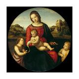 Mary with the Child, John the Baptist and a Holy Boy (Madonna Terranuov), C. 1505 Giclée-vedos tekijänä Raphael,