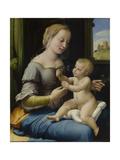 The Madonna of the Pinks (La Madonna Dei Garofan), Ca 1506-1507 Reproduction procédé giclée par  Raphael