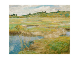 The Concord Meadow, C. 1890 Giclee Print by Childe Hassam