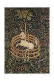 The Unicorn in Captivity, C. 1500 Giclee Print