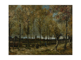 Poplars Near Nuenen, 1885 Giclee Print by Vincent van Gogh
