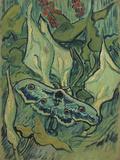 Green Peacock Moth (The Emperor Mot), 1889 Giclee Print by Vincent van Gogh