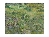 Long Grass with Butterflies, 1890 Giclee-trykk av Vincent van Gogh