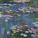 Waterlelies, 1916 Gicléedruk van Claude Monet