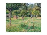 The Orchard at Éragny, 1896 Reproduction procédé giclée par Camille Pissarro