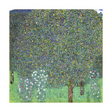Rose Bushes under the Trees, C. 1905 Giclée-Druck von Gustav Klimt
