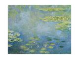 Water Lilies, C. 1906 Reproduction procédé giclée par Claude Monet