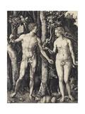 Adam and Eve, 1504 Reproduction procédé giclée par Albrecht Dürer
