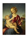 Madonna Colonna, 1508 Reproduction procédé giclée par  Raphael